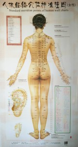 terviseviis-meridiaanid