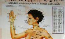 Meridiaanid on inimkeha energeetilised ühendusteed
