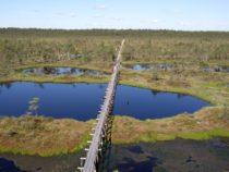 Eestimaa matkarajad: Männikjärve