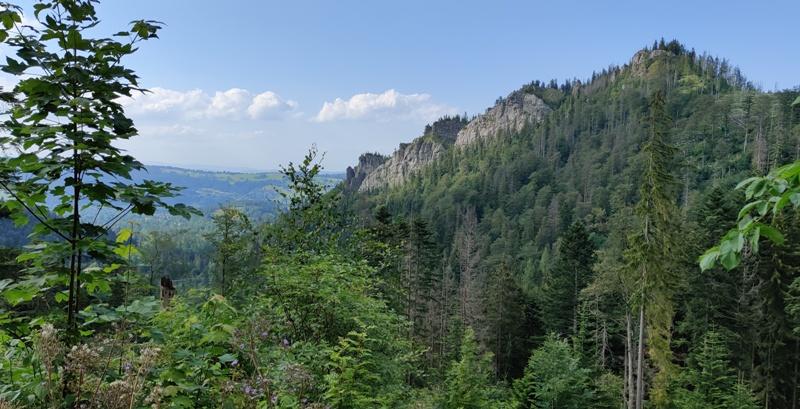 Tatra rahvuspark