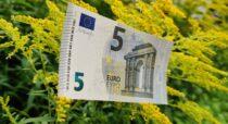 Kuidas küllus voolama saada ehk eksperiment 5 euroga